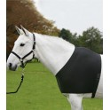 Vest hobusele must M