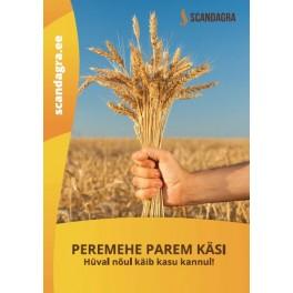 """Raamat """"Peremehe parem käsi"""" 2019 UUS!"""