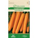 Porgand Amsterdam 2 - Daucus carota L.
