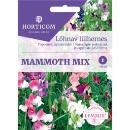 Lõhnav lillhernes Mammoth mix 5g